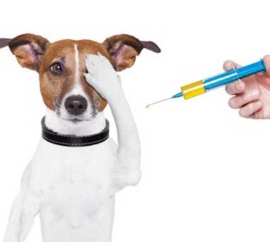 Vaccinari